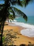 Coconut Bay!