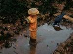 Save Water.. Save Life !!