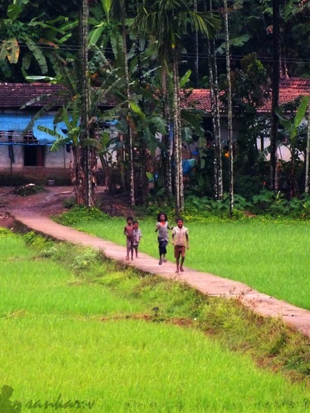 November 1 - Kerala Piravi!